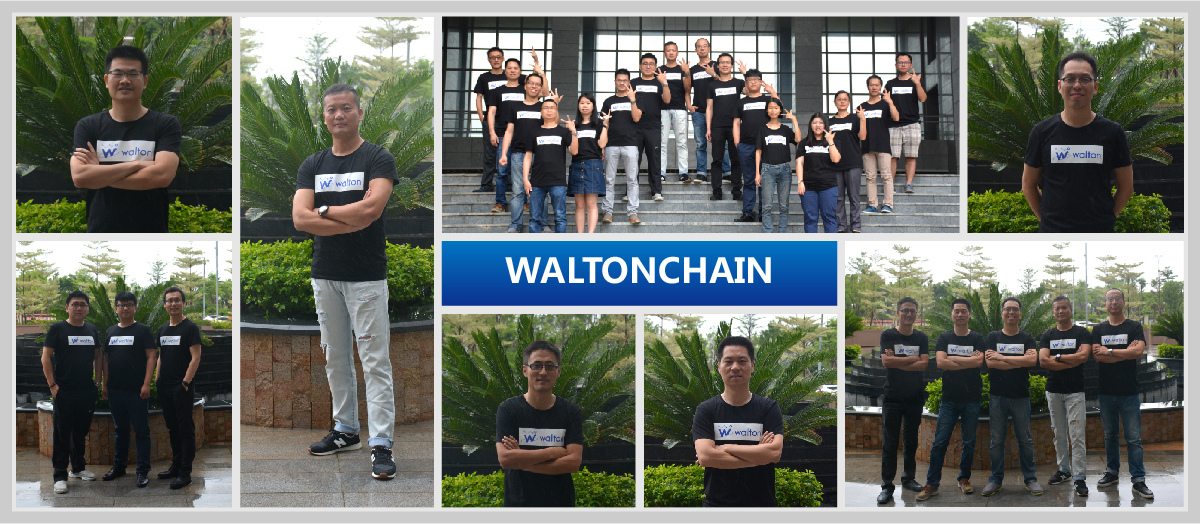 Walton chain team