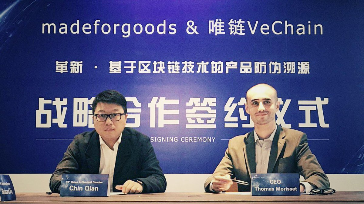 vechain foundation